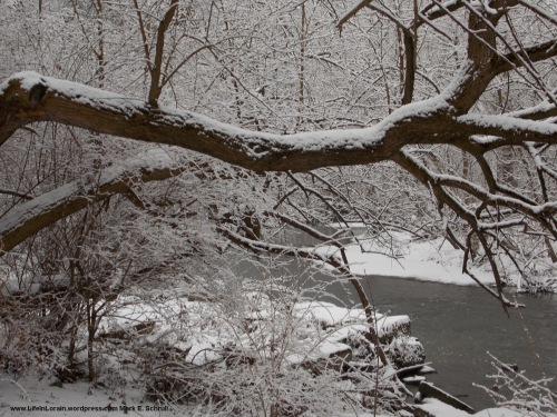 1 Snowy Wonderland Bcr